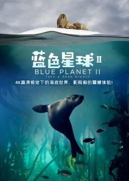 蓝色星球 第2季(2017)