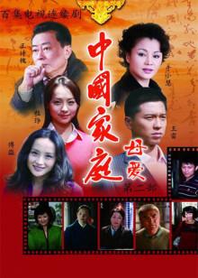 中国家庭之母爱海报