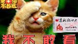 【荣耀宅急送】24:跌宕起伏小组赛收官,天秀+下饭谁更香?