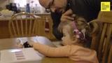 女儿患病即将失明 爸爸亲自制造幼儿盲文学习机