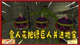 我的世界植物大战僵尸:食人花把绿巨人当成僵尸关在地牢