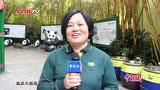 """易建联林书豪动物园打""""短工""""变身熊猫保育员"""