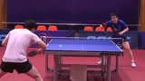 中国乒乓球队公布世乒赛参赛名单