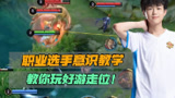 【加菲】KPL赛事聚焦:最佳游走阿豆教你如何玩转游走位!
