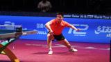 卡塔尔乒乓球赛十佳球,国乒大秀球技,包揽男女单打双冠