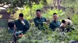 林书豪、翟晓川、孙悦邂逅熊猫宝宝,豪哥忍不住抚摸了一下