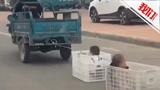 """危险!家长开电动三轮车马路上""""遛娃"""" 车后拉着塑料筐一筐一个娃"""