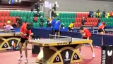 日本乒协同意安排中国乒乓球队集训